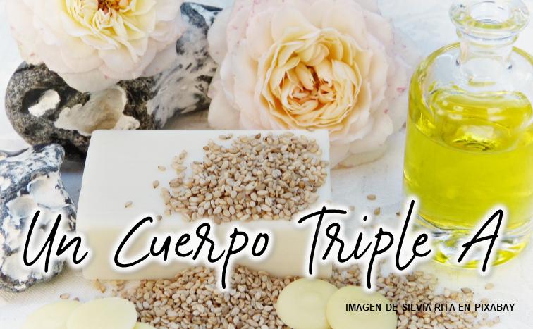 """Cuerpo """"Triple A"""""""